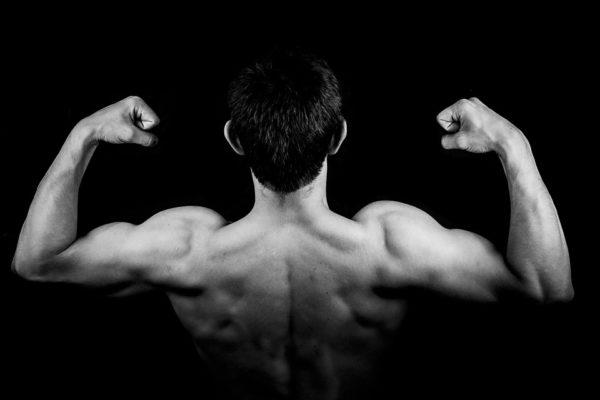 spiruline-proteines-muscles