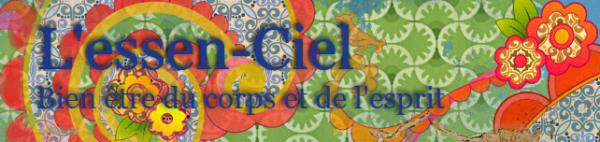 logo du blog lessen-ciel