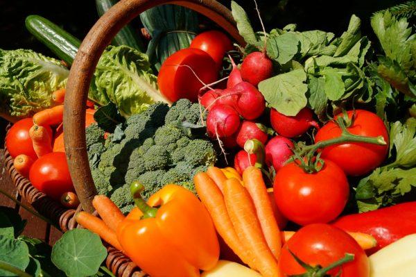 Photo de légumes bio potentiellement contaminés aux métaux lourds