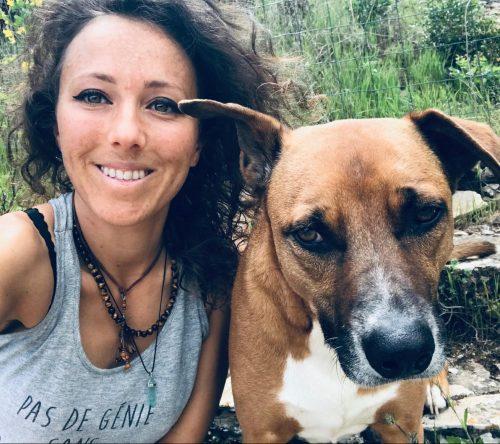 Marine-coach-alimentation-canine