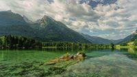 La spiruline se développe naturellement dans les lacs d'eau douce