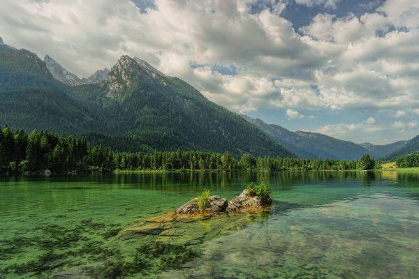 la micro algue se développe naturellement dans les lacs d'eau douce