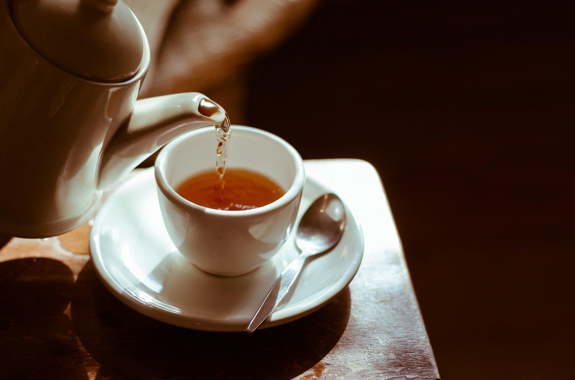 Thé de moringa, une infusion aux nombreux bienfaits