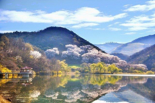 Paysage de Corée, pays dorigine du Panax Ginseng