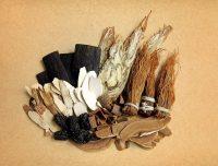 Choix de plantes médicinales, ginseng de qualité